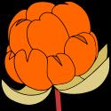 multecore-logo-color-125x125
